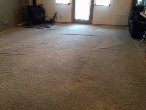 Carpet Stretching Centurion Carpet Cleaning