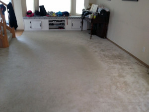 Before Carpet Spot Removal