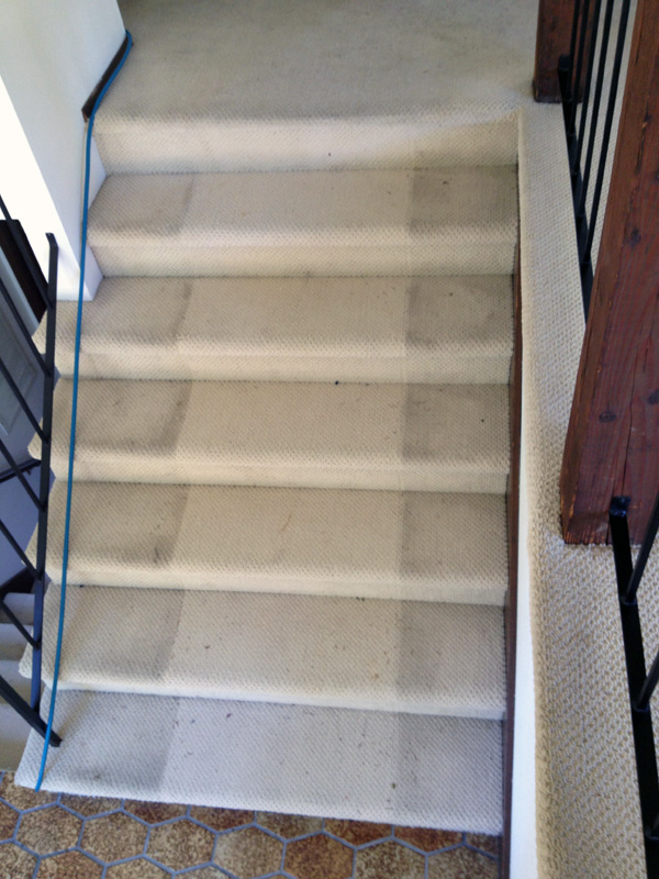 Great Before Stair Carpet Cleaning